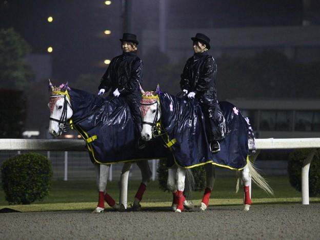 写真: 川崎競馬の誘導馬04月開催 重賞Ver-120409-03-large