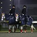 川崎競馬の誘導馬04月開催 重賞Ver-120409-03-large
