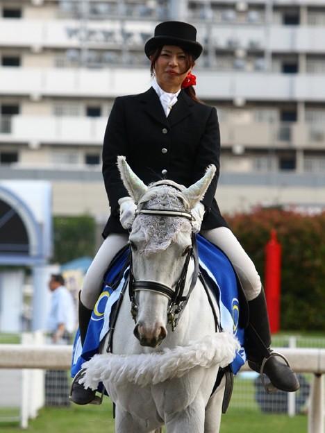 写真: 川崎競馬の誘導馬05月開催 こいのぼり青Ver-120514-15-large