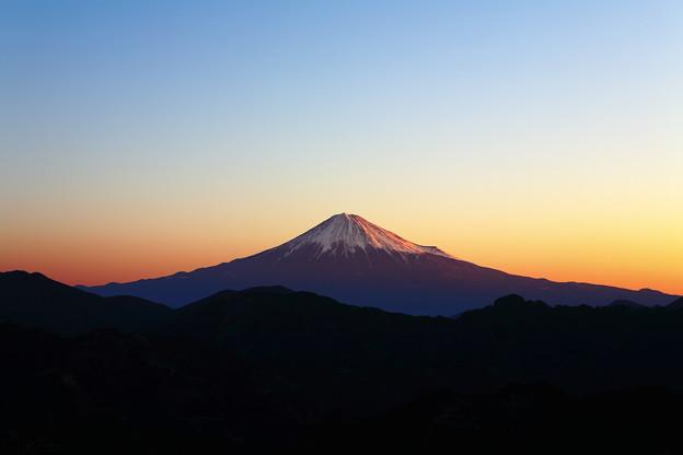 写真: 吉原 朝焼け