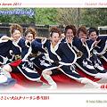 写真: 雅華組_16 - ザ・よさこい大江戸ソーラン祭り2011