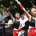 Photos: 風来坊_17 - よさこい祭りin光が丘公園2011