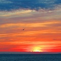 極彩色の伊良湖水道