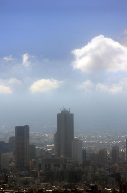 天望デッキからの風景 15
