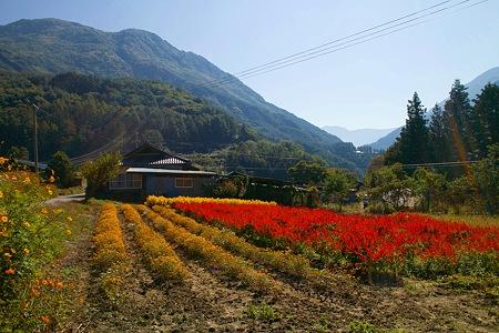 福徳寺からみえる風景SDIM0143