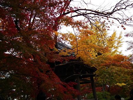 京都 288
