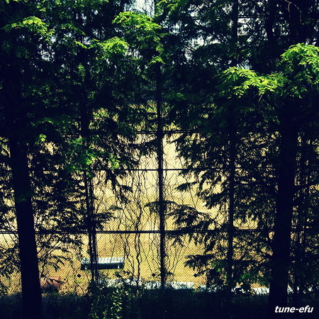 公園・奈良ver03