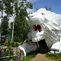 Photos: northsafari110705001