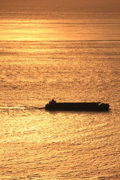 黄金色の海をいく