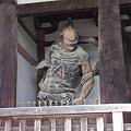 Photos: 法隆寺中門金剛力士像