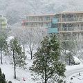 Photos: 20120229_083804