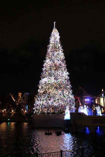 096 高さ30m!ギネス認定のLEDイルミネーションのクリスマスツリー