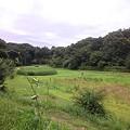 写真: 110718 野津田公園 01