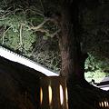Photos: hanatouro_92