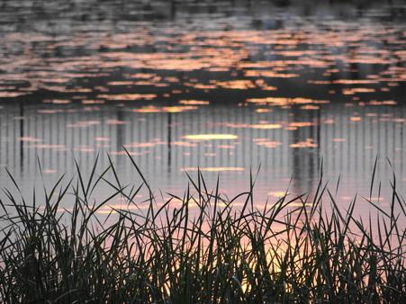 夕陽の幻影