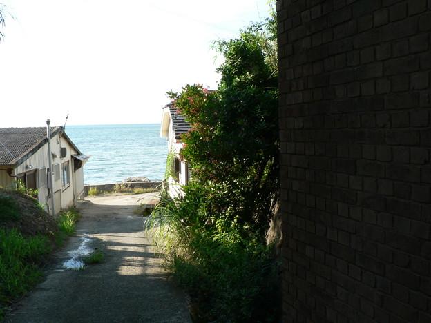 真夏の海へ (3)