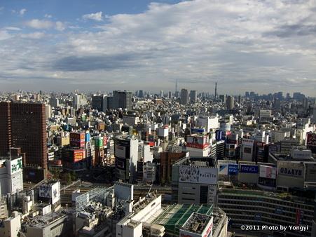 新宿エルタワーからの眺め