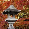 Photos: 石塔と紅葉