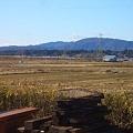 Photos: 田園風景 CIMG3811