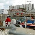 Photos: 漁師さん