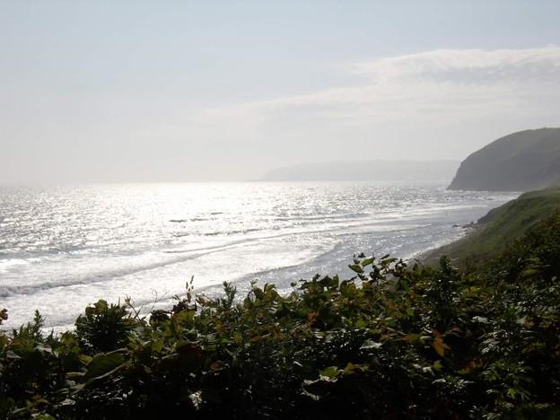 8_11焼尻島、南海岸03