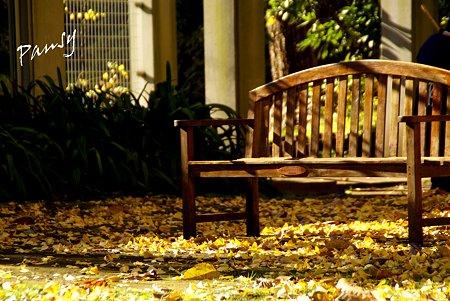陽のあたるベンチ・・