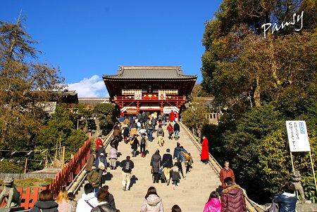 本宮への大石段・・鶴岡八幡宮・・14
