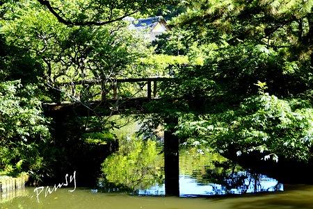池に映して・・水辺の sketch・・13