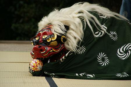 獅子舞2、鎌倉!(111023)