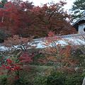 写真: 円通寺 - 03