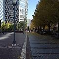 Photos: 2011 冬 新宿