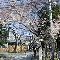 12.04.04.威光山法明寺