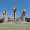 一本松公園の桜(1)