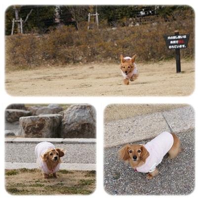 20120128 お散歩2