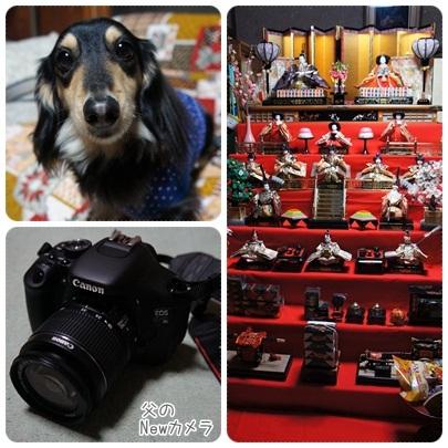 20120310 雛壇&カメラ