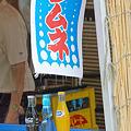 Photos: 夏よ恋