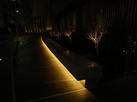 0126_光樹