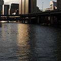 Photos: 堂島川の夕日