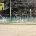 写真: ドッグリゾート犬山
