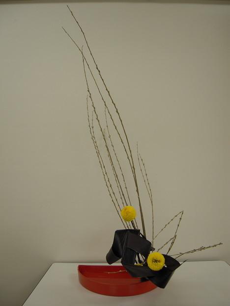 コオリ柳、ピンポン菊、ブラックリーフ