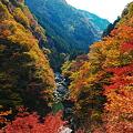 色づく峡谷