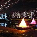 昭和記念公園のイルミネーション#4
